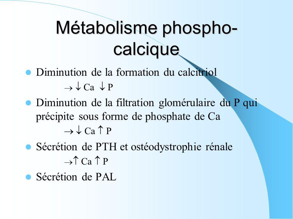 Métabolisme phospho- calcique Diminution de la formation du calcitriol Ca P Diminution de la filtration glomérulaire du P qui précipite sous forme de