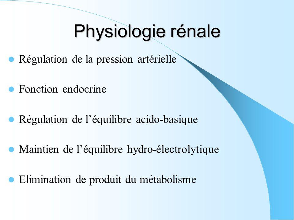 Physiologie rénale Régulation de la pression artérielle Fonction endocrine Régulation de léquilibre acido-basique Maintien de léquilibre hydro-électro