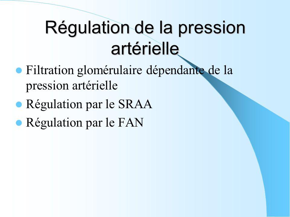 Régulation de la pression artérielle Filtration glomérulaire dépendante de la pression artérielle Régulation par le SRAA Régulation par le FAN