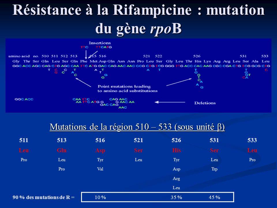 Résistance à la Rifampicine : mutation du gène rpoB 511513516521526531533 LeuGlnAspSerHisSerLeu ProLeuTyrLeuTyrLeuPro ValAspTrp Arg Leu 90 % des mutat