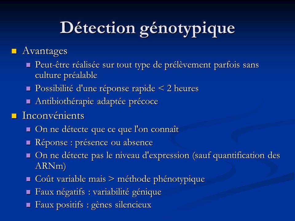Hybridation : recherche de mutations du gène rpoB Exemple de Bandelette Inno-LiPA-Rif-TB®