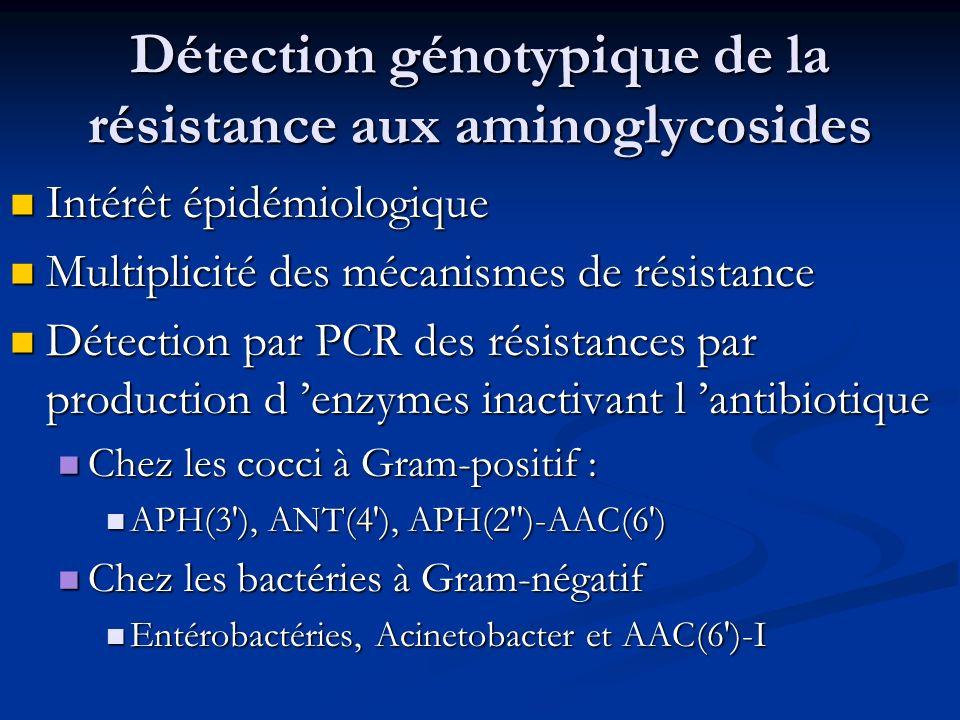 Détection génotypique de la résistance aux aminoglycosides Intérêt épidémiologique Intérêt épidémiologique Multiplicité des mécanismes de résistance M