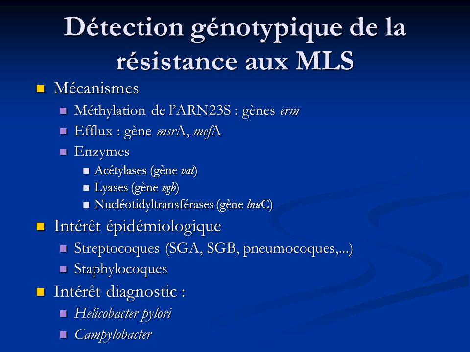Détection génotypique de la résistance aux MLS Mécanismes Mécanismes Méthylation de lARN23S : gènes erm Méthylation de lARN23S : gènes erm Efflux : gè