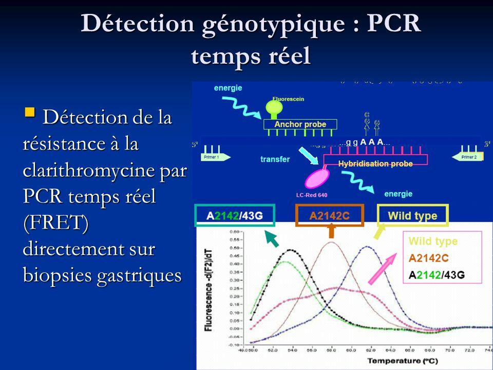Détection génotypique : PCR temps réel Détection de la résistance à la clarithromycine par PCR temps réel (FRET) directement sur biopsies gastriques D