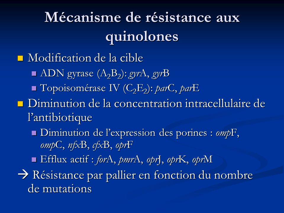 Mécanisme de résistance aux quinolones Modification de la cible Modification de la cible ADN gyrase (A 2 B 2 ): gyrA, gyrB ADN gyrase (A 2 B 2 ): gyrA