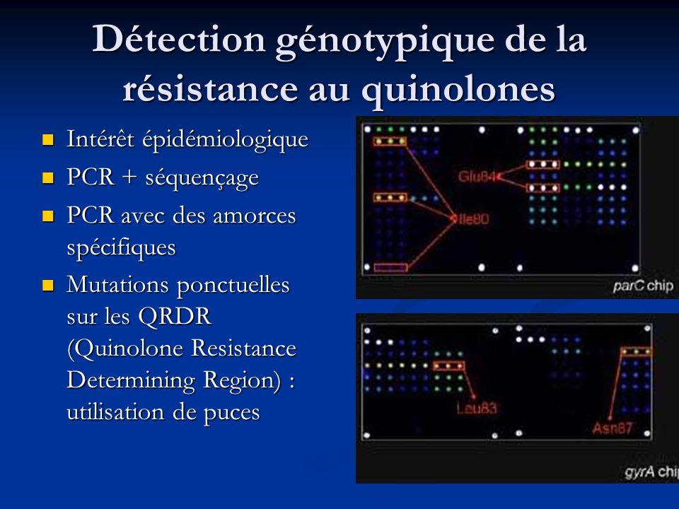 Détection génotypique de la résistance au quinolones Intérêt épidémiologique Intérêt épidémiologique PCR + séquençage PCR + séquençage PCR avec des am