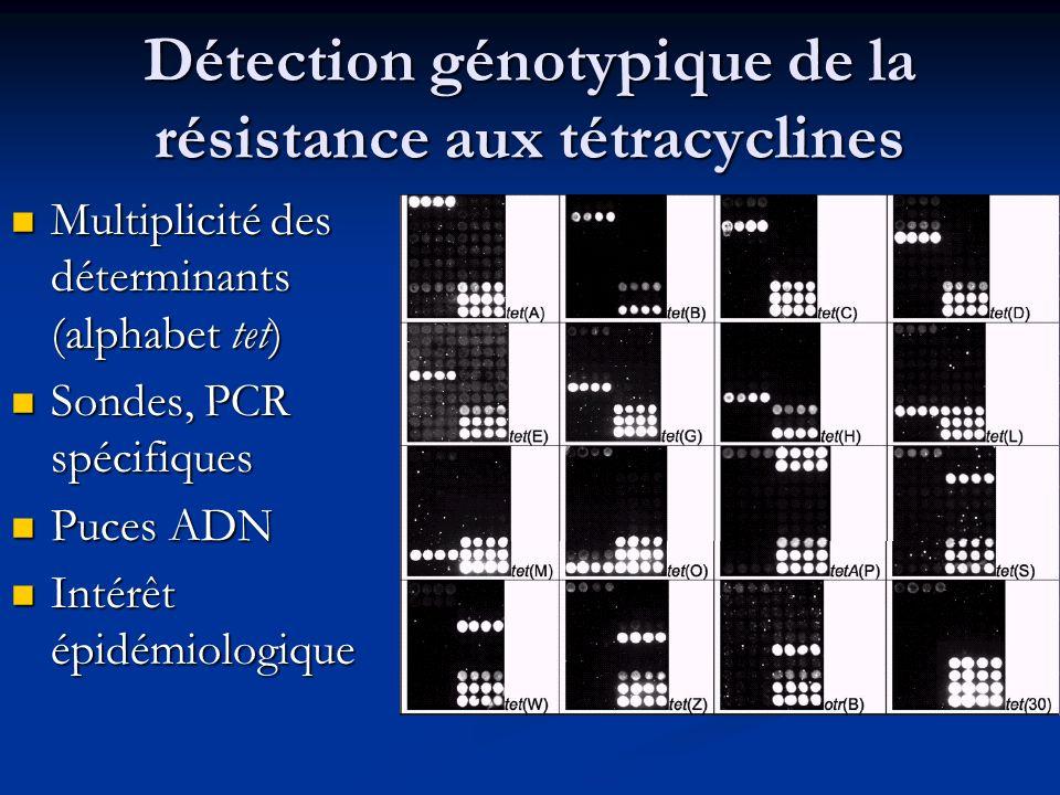 Détection génotypique de la résistance aux tétracyclines Multiplicité des déterminants (alphabet tet) Multiplicité des déterminants (alphabet tet) Son