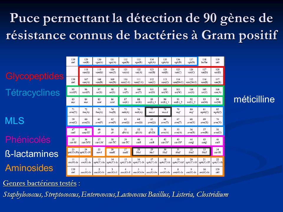 Puce permettant la détection de 90 gènes de résistance connus de bactéries à Gram positif Genres bactériens testés : Staphylococcus, Streptococcus, En