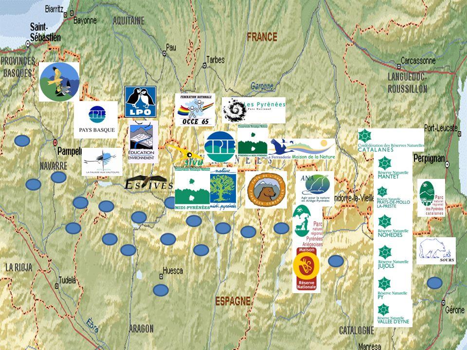 Departament de Medi Ambient del Govern dAragó Fundació per a la Conservació del Trencalòs Gestió Ambiental Viveros y Repoblaciones de Navarra Mendikat