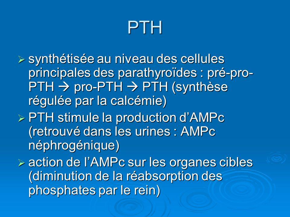 Fonctions biologiques de la PTH Os : augmentation de la résorption ostéoclastique Os : augmentation de la résorption ostéoclastique Rein : Rein : Augmentation de la réabsorption du Ca Augmentation de la réabsorption du Ca Diminution de la réabsorption du P Diminution de la réabsorption du P Activation de la 1 hydroxylase Activation de la 1 hydroxylase Hypercalcémiante Hypercalcémiante Hypophosphatémiante Hypophosphatémiante