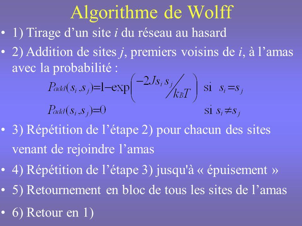 n ième pas Monte-Carlo (n+1) ième pas Monte-Carlo « Tension de surface » de lamas 2|E n+1 -E n | « Nombre de sites » de lamas 2|M n+1 -M n |