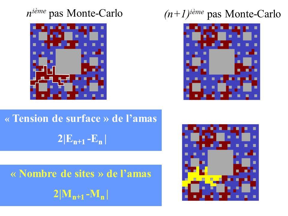 SP a (5 2,24) D f ~ 1.975 SP a (3 2,8) D f ~ 1.893 Fonctions dautocorrélation de laimantation à T C C M (n) n n