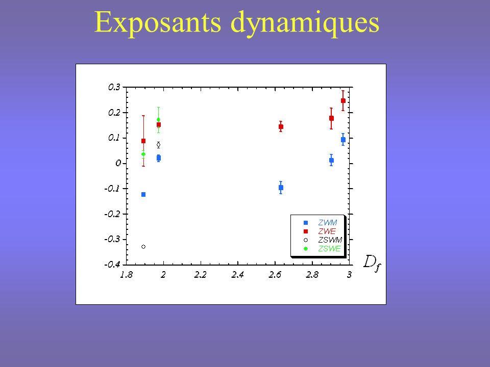 Distributions de probabilité des tailles des amas de Wolff à T C SP a (5 2,24), D f 1.975SP a (4 3,56), D f 2.904
