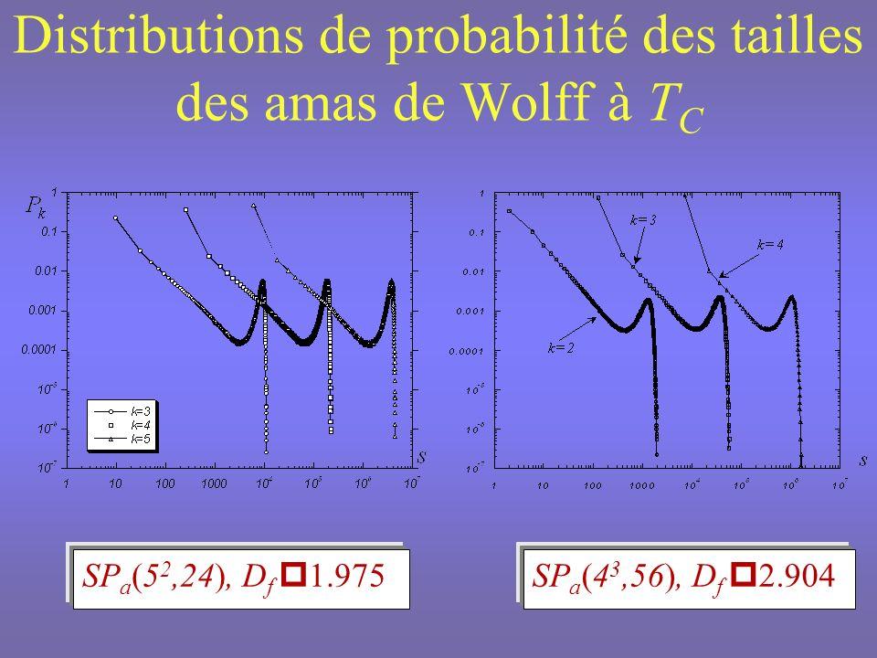 Invariance déchelle des distributions de probabilité des tailles des amas P k (s)= P k-1 (s l -y h )= P k-1 (s / l )