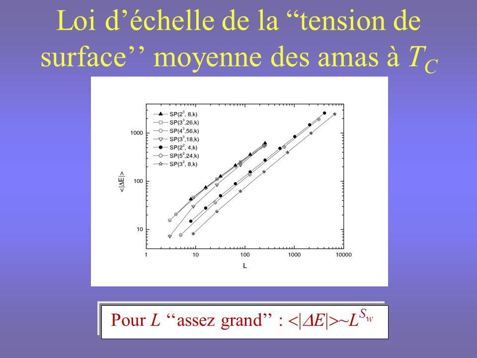 Invariance déchelle des densités de probabilité de tension de surface De létape k à létape k-1 : P S E l -d S P S ( E l -y s )