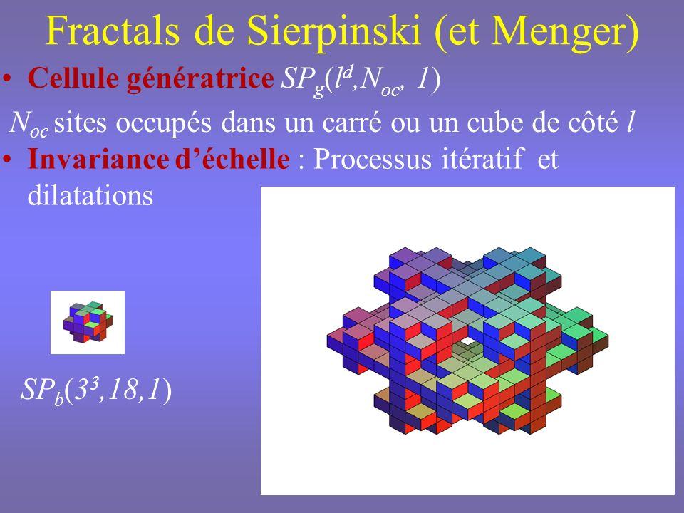 k étapes ditération Réseau SP g (l d,N oc, k) Taille L=l k Nombre de sites N oc k = L D f Dimension de Hausdorff Paramètres topologiques additionnels Degré de ramification, connectivité, lacunarité