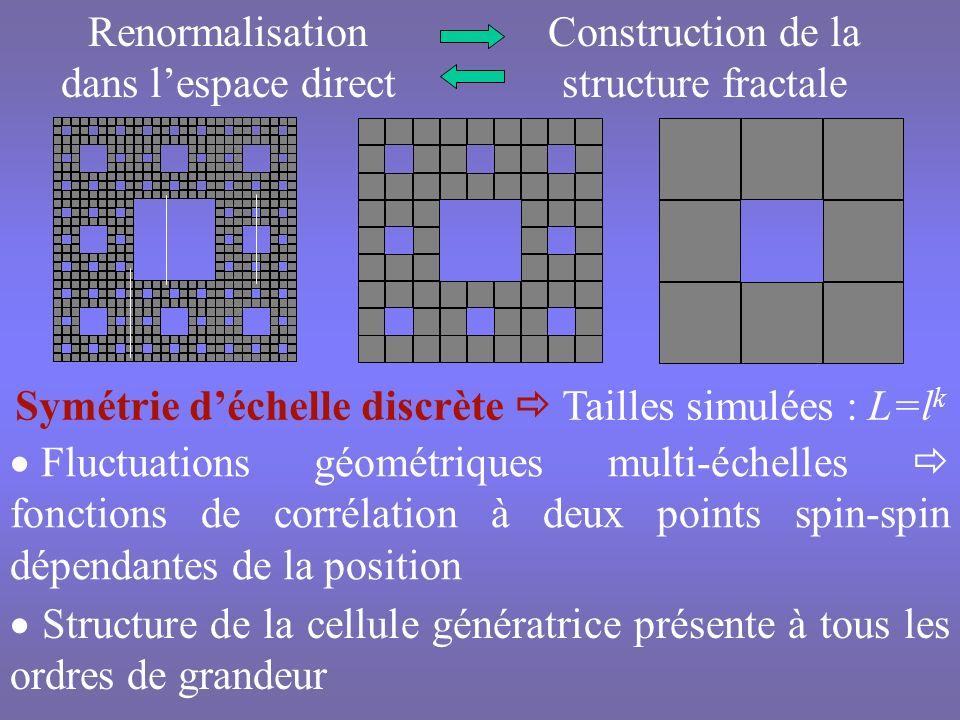 Propriétés topologiques dépendantes de létape ditération k de la structure Ecart relatif du nombre moyen de premiers voisins z g (l d,N oc, k) par rapport à sa limite thermodynamique z g (l d,N oc, ) k