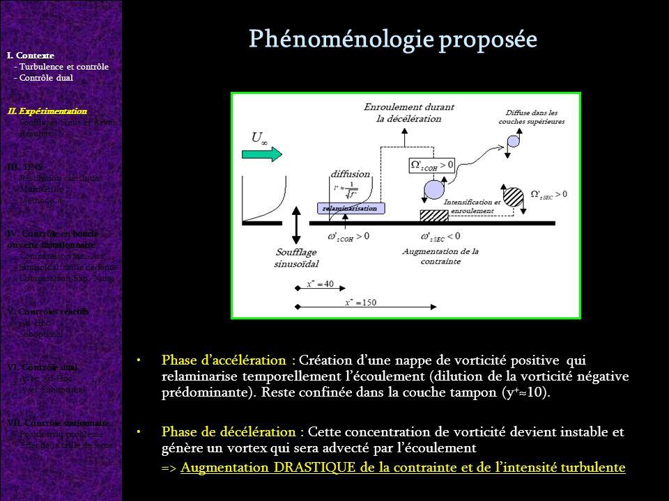 Phénoménologie proposée Phase daccélération : Création dune nappe de vorticité positive qui relaminarise temporellement lécoulement (dilution de la vorticité négative prédominante).