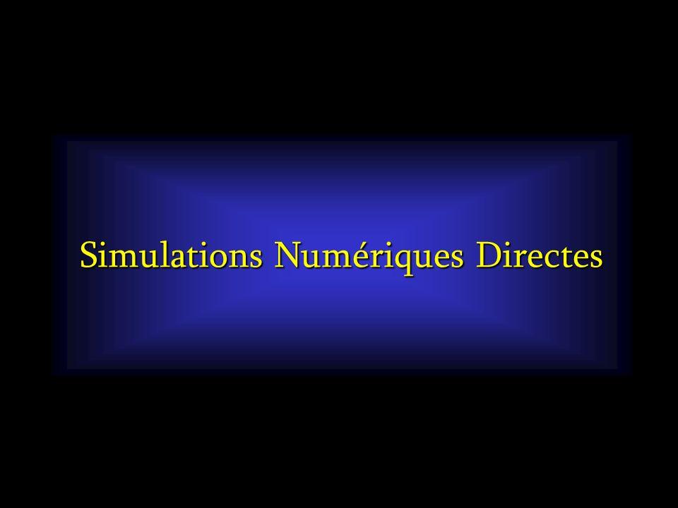 Simulations Numériques Directes