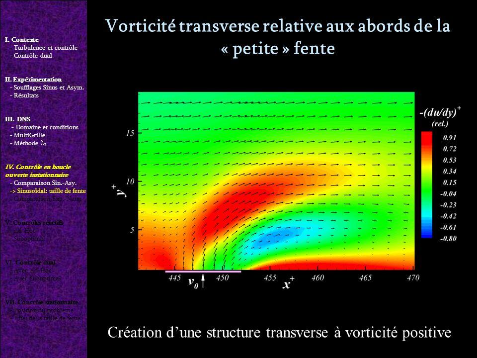 Vorticité transverse relative aux abords de la « petite » fente I.