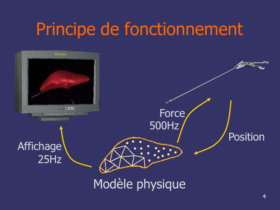 4 Principe de fonctionnement Modèle physique Position Affichage 25Hz Force 500Hz