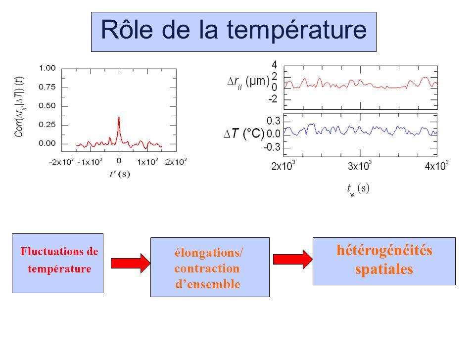 Rôle de la température Fluctuations de température élongations/ contraction densemble hétérogénéités spatiales