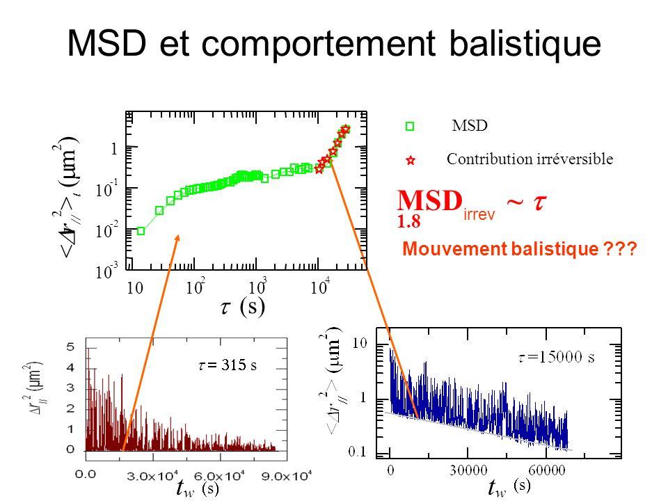 MSD et comportement balistique Mouvement balistique ??? MSD ~ 1.8 irrev Contribution irréversible MSD < r // 2 > t ( m 2 ) (s) w t s w t s s