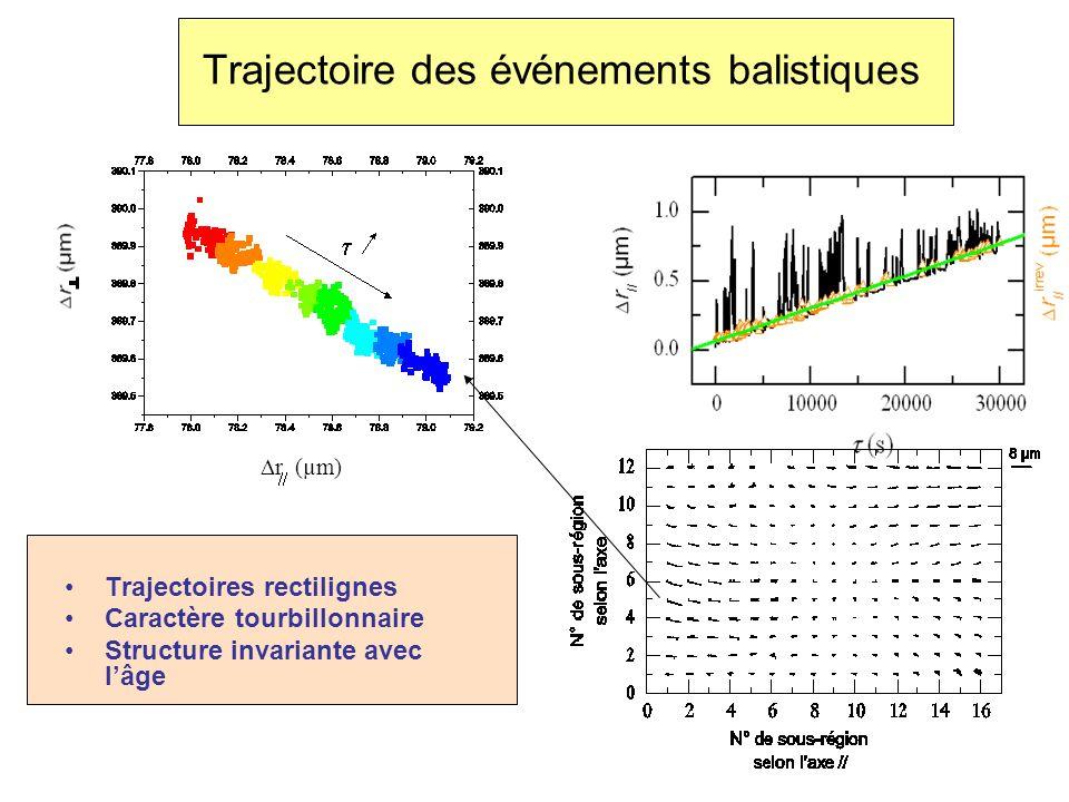 Trajectoires rectilignes Caractère tourbillonnaire Structure invariante avec lâge r (µm)