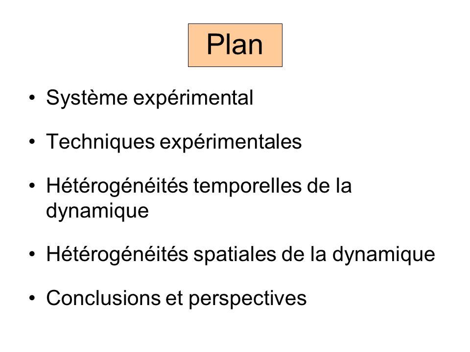 Plan Système expérimental Techniques expérimentales Hétérogénéités temporelles de la dynamique Hétérogénéités spatiales de la dynamique Conclusions et