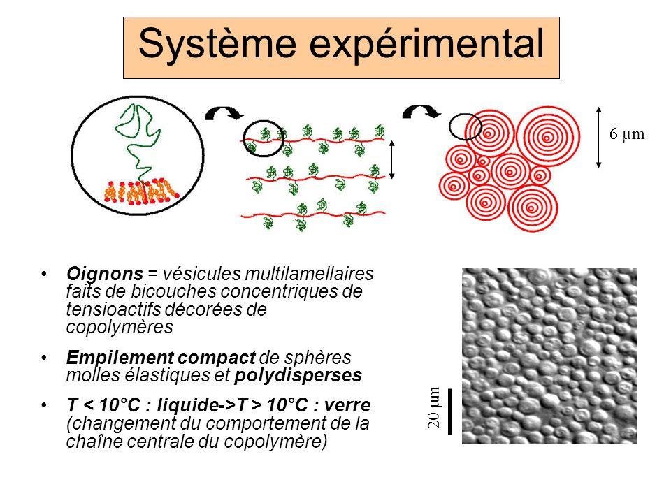 Système expérimental Oignons = vésicules multilamellaires faits de bicouches concentriques de tensioactifs décorées de copolymères Empilement compact