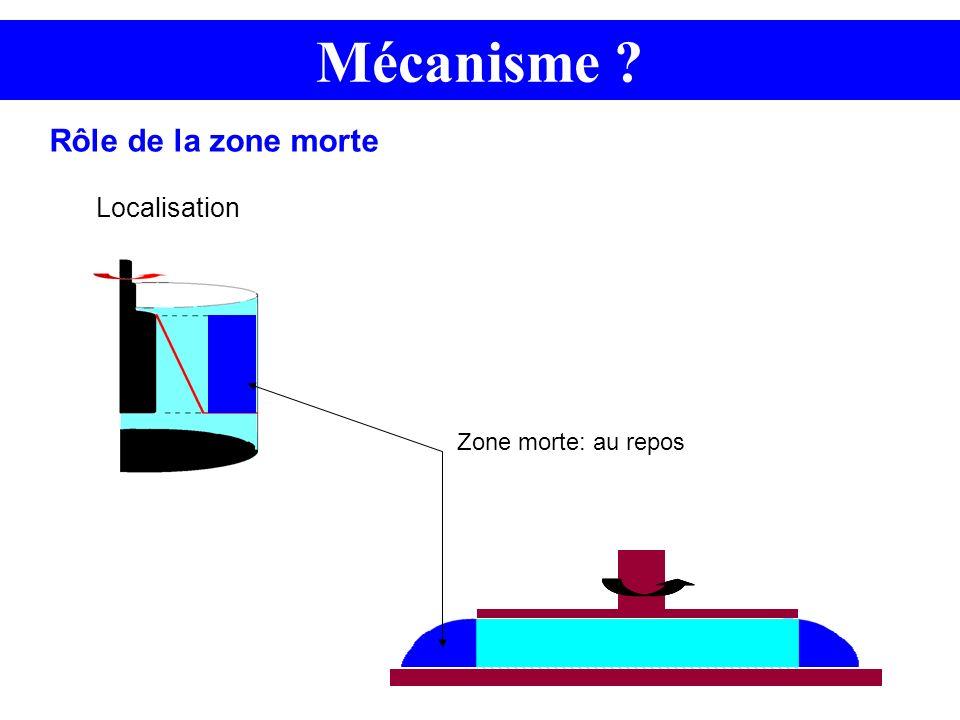 Mécanisme ? Localisation Rôle de la zone morte Zone morte: au repos