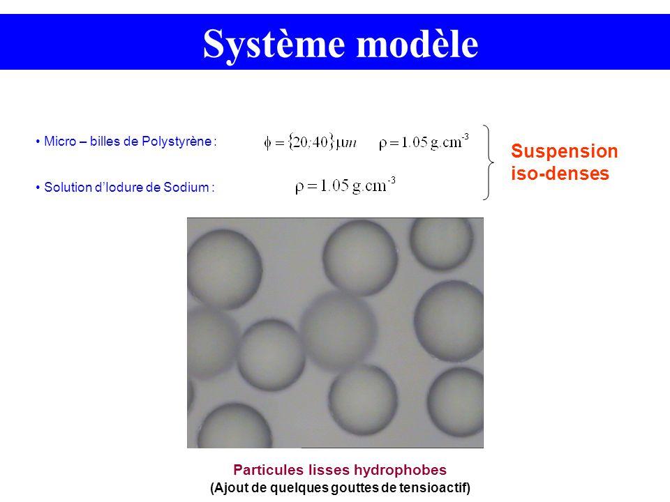 Système modèle Micro – billes de Polystyrène : Solution dIodure de Sodium : Suspension iso-denses Particules lisses hydrophobes (Ajout de quelques gou