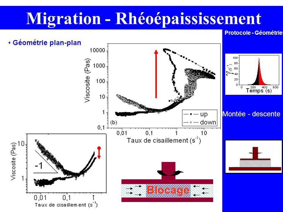 Blocage Montée - descente Protocole - Géométrie Migration - Rhéoépaississement Géométrie plan-plan