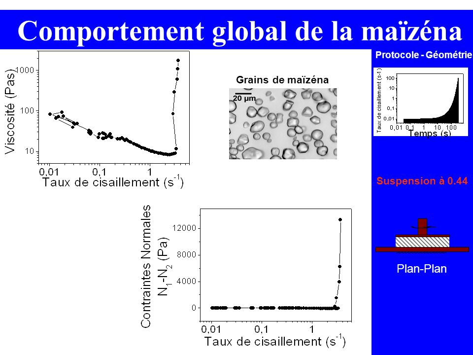 Plan-Plan Protocole - Géométrie Suspension à 0.44 Comportement global de la maïzéna Grains de maïzéna