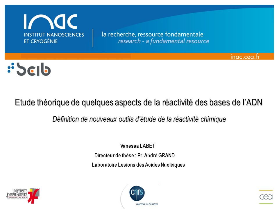 Directeur de thèse : Pr. André GRAND Laboratoire Lésions des Acides Nucléiques Vanessa LABET Etude théorique de quelques aspects de la réactivité des