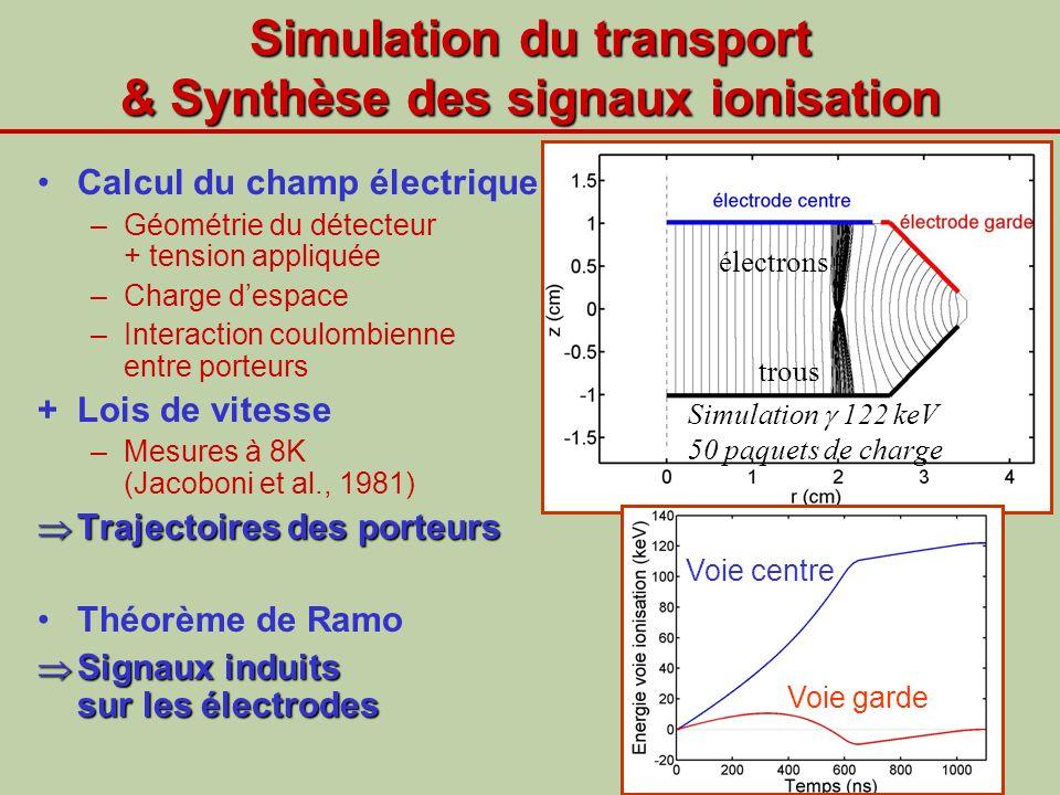 Simulation du transport & Synthèse des signaux ionisation Calcul du champ électrique –Géométrie du détecteur + tension appliquée –Charge despace –Inte