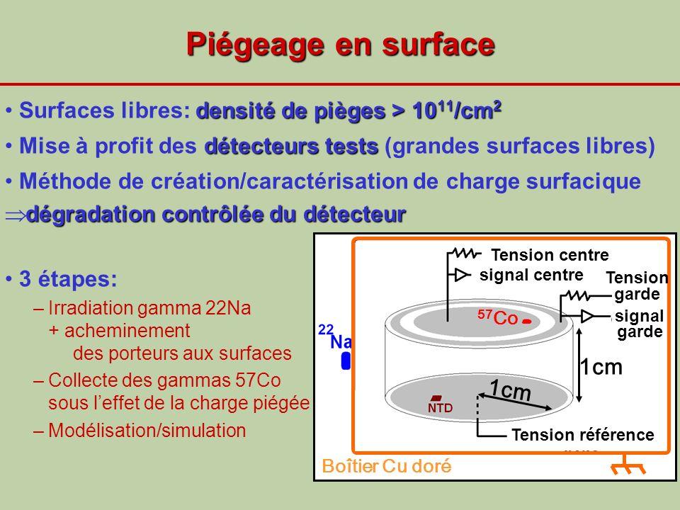 Piégeage en surface densité de pièges > 10 11 /cm 2Surfaces libres: densité de pièges > 10 11 /cm 2 détecteurs testsMise à profit des détecteurs tests
