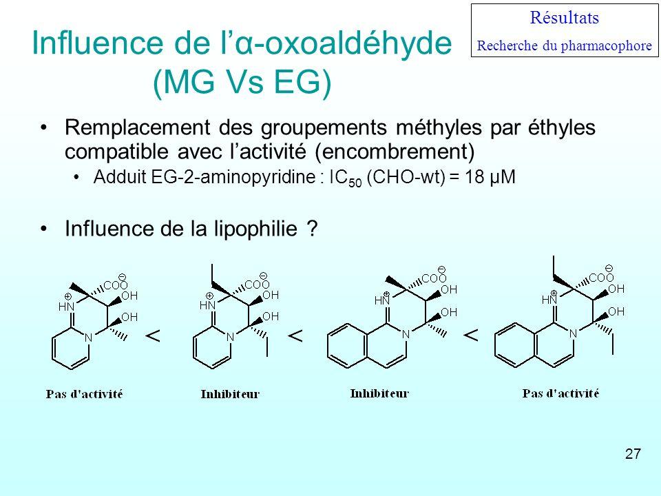 Influence de lα-oxoaldéhyde (MG Vs EG) Remplacement des groupements méthyles par éthyles compatible avec lactivité (encombrement) Adduit EG-2-aminopyr