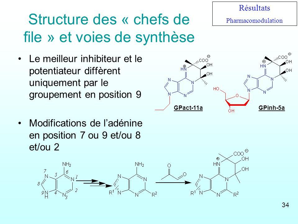Structure des « chefs de file » et voies de synthèse Le meilleur inhibiteur et le potentiateur diffèrent uniquement par le groupement en position 9 Mo