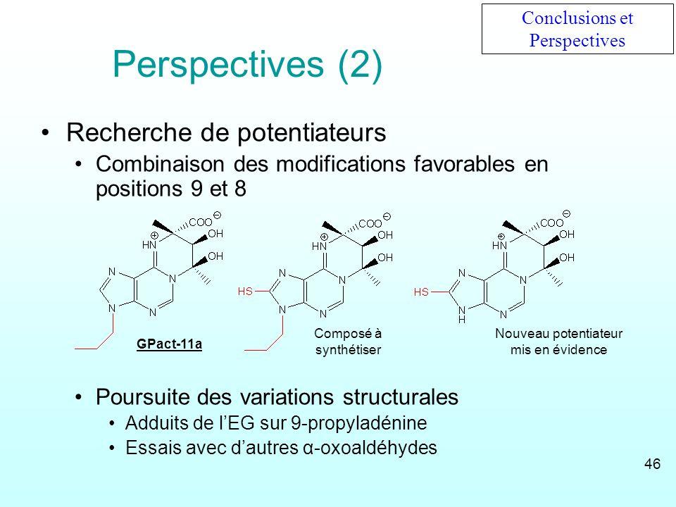 Perspectives (2) Recherche de potentiateurs Combinaison des modifications favorables en positions 9 et 8 Poursuite des variations structurales Adduits