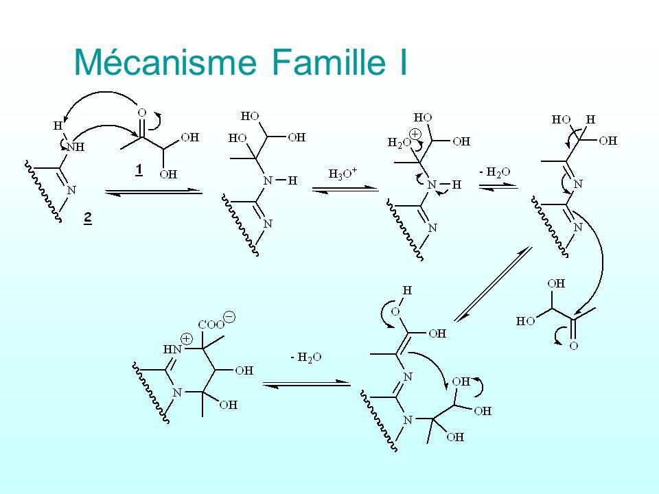 Mécanisme Famille I