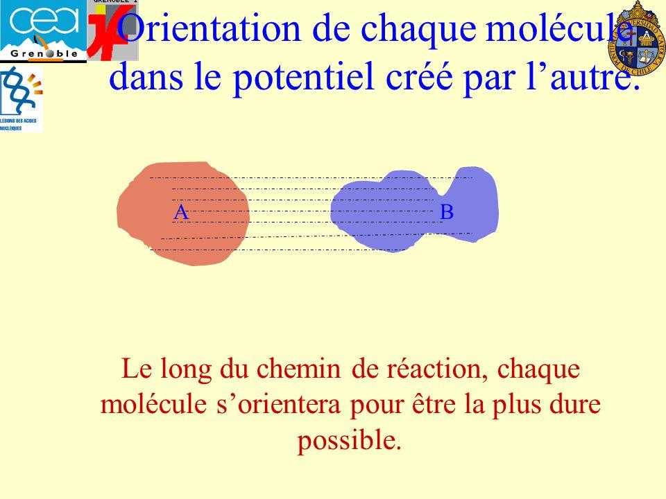 A B Orientation de chaque molécule dans le potentiel créé par lautre.