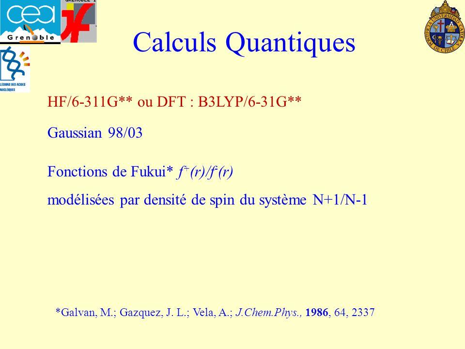 Calculs Quantiques HF/6-311G** ou DFT : B3LYP/6-31G** Fonctions de Fukui* f + (r)/f - (r) modélisées par densité de spin du système N+1/N-1 *Galvan, M.; Gazquez, J.