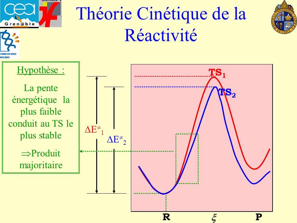 Théorie Cinétique de la Réactivité TS 1 RP TS 2 E 1 E 2 Hypothèse : La pente énergétique la plus faible conduit au TS le plus stable Produit majoritaire