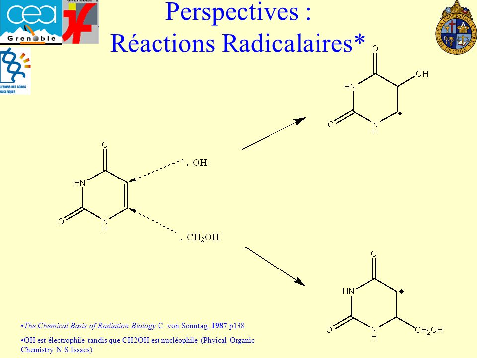 Perspectives : Réactions Radicalaires* The Chemical Basis of Radiation Biology C. von Sonntag, 1987 p138 OH est électrophile tandis que CH2OH est nucl
