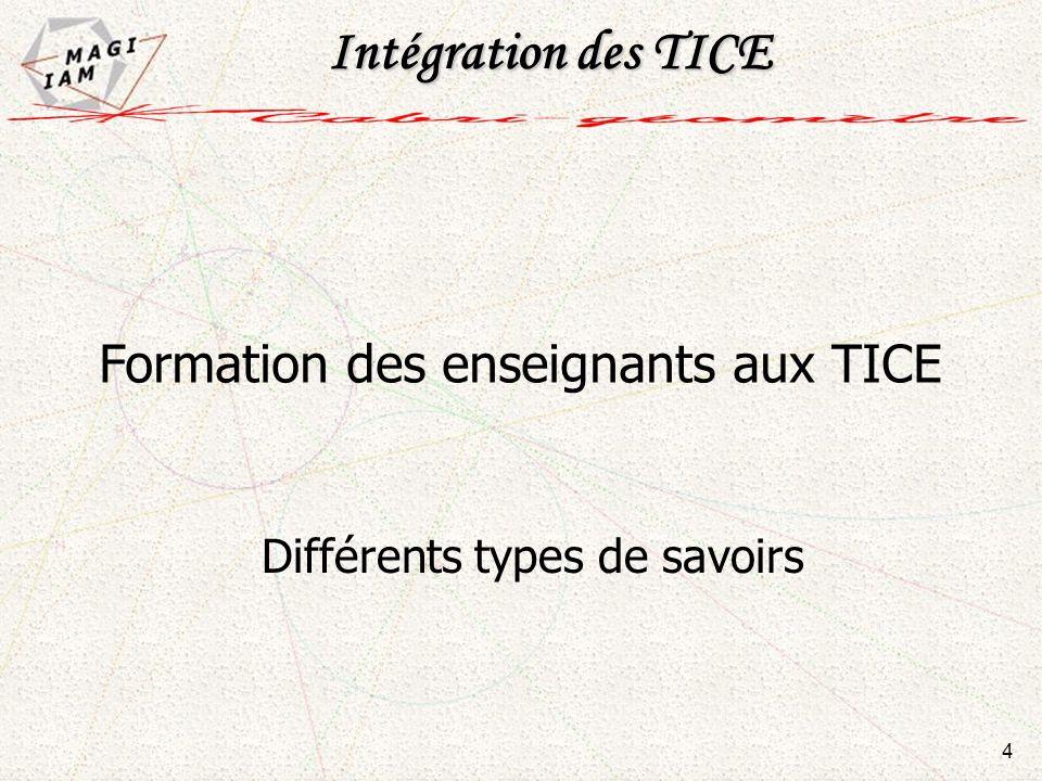 Intégration des TICE Formation des enseignants aux TICE 4 Différents types de savoirs