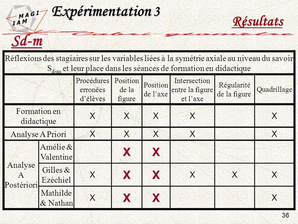 Expérimentation 3 Résultats Réflexions des stagiaires sur les variables liées à la symétrie axiale au niveau du savoir S d-m et leur place dans les sé