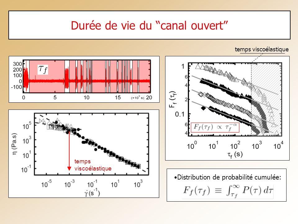 Durée de vie du canal ouvert Distribution de probabilité cumulée: temps viscoélastique. temps visco é lastique