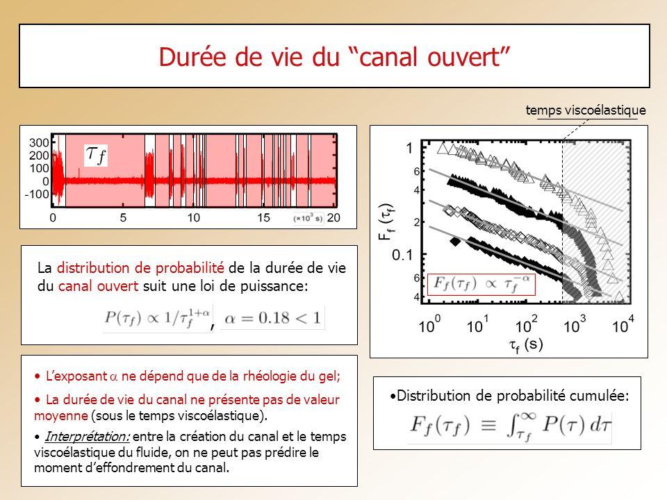 Durée de vie du canal ouvert Lexposant ne dépend que de la rhéologie du gel; La durée de vie du canal ne présente pas de valeur moyenne (sous le temps
