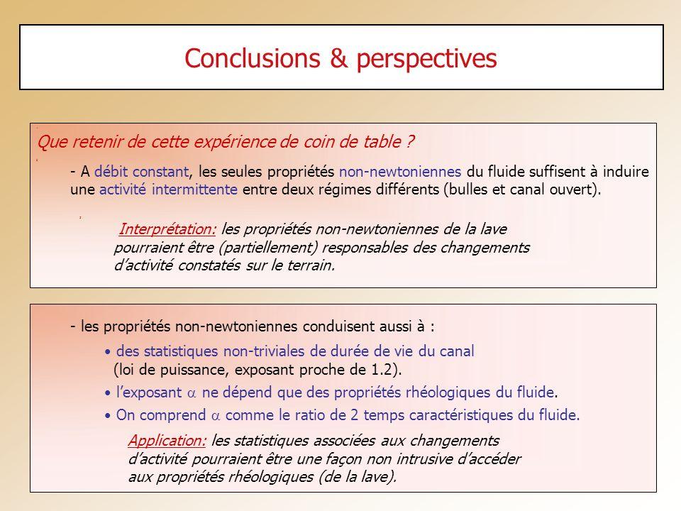 - les propriétés non-newtoniennes conduisent aussi à : des statistiques non-triviales de durée de vie du canal (loi de puissance, exposant proche de 1